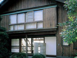 JAPANESE RED CEDAR 屋久島地杉
